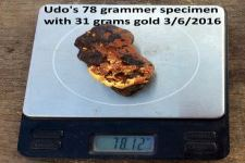 78 Gram Speci gold - Click to enlarge