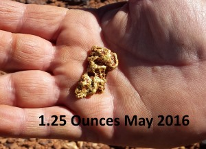 56 gram gold nugget found
