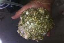2600 gram gold specimen