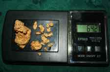 64 grams alluvial gold found by Jens - Click to enlarge