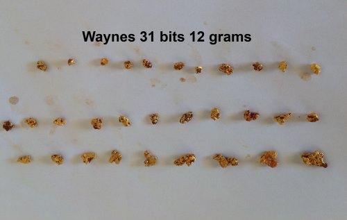Waynes 31 bits