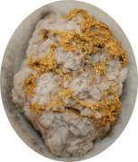 Gold Specimen in Quartz